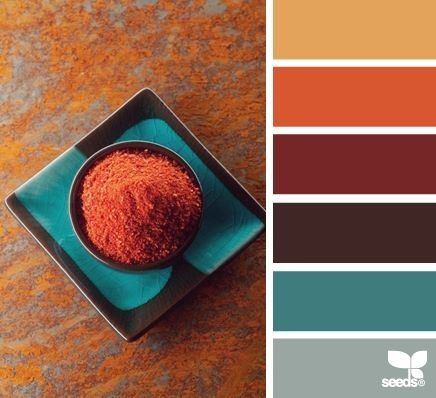 Photo of Mediterranean Spice Colors