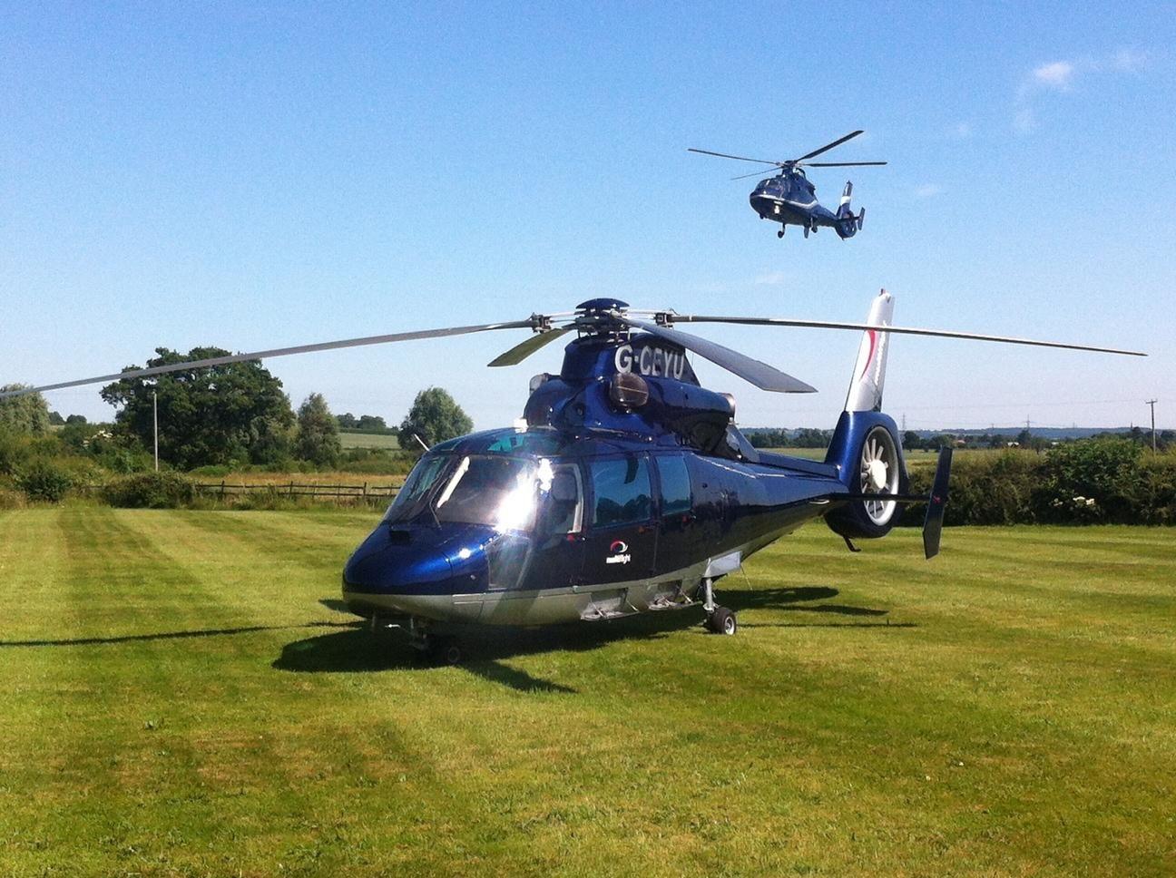 Elicottero 350 : Pin by todd ross on a i r c r a f t r o t a r y w i n g