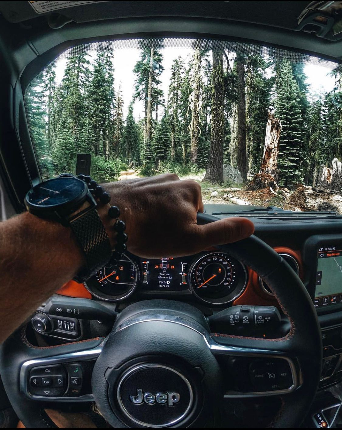 Explore the unknown!🌲 . 📸 californiaroamer . Jeep