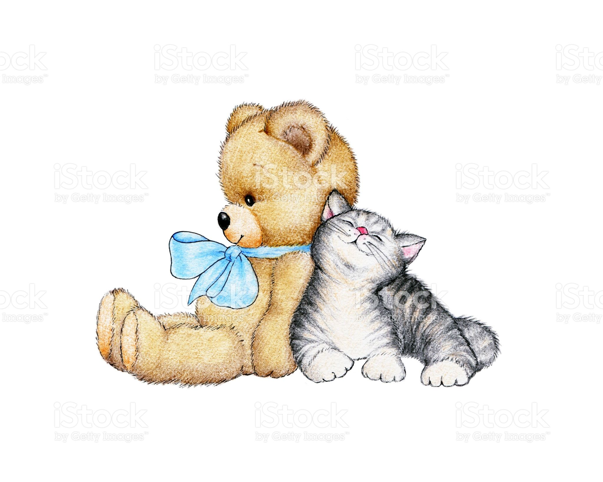 Teddy Bear And Kitten On A White Background Yavru Kediler Kedi