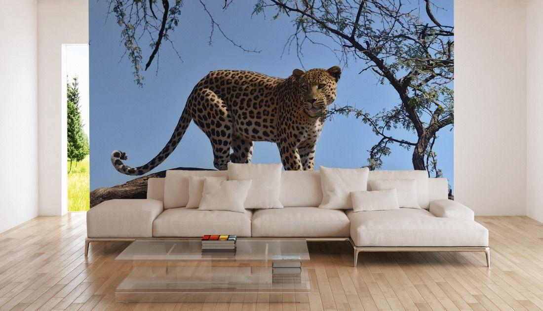 Fototapete Leopard auf einem Baum - #awallo #awalloshop ...