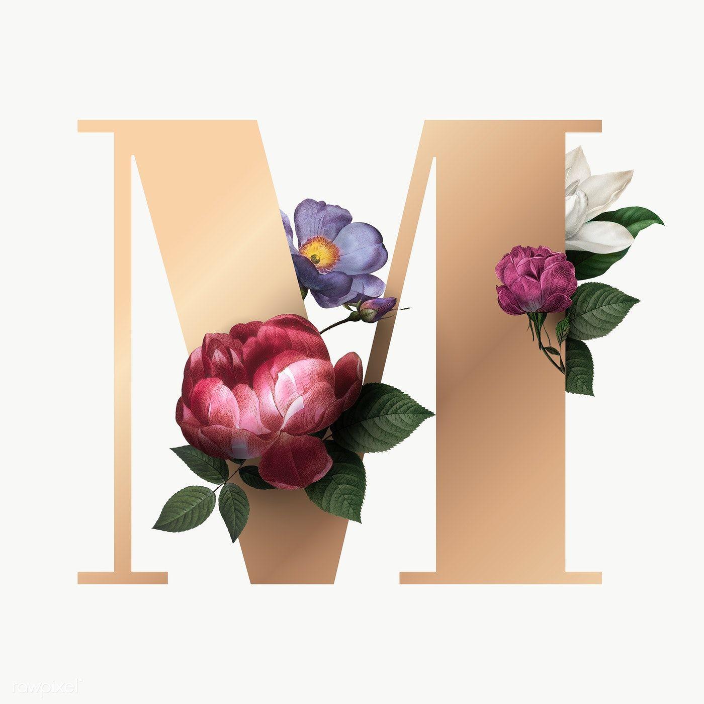 Classic And Elegant Floral Alphabet Font Letter M Transparent Png Free Image By Rawpixel Com Lettering Alphabet Fonts Floral Typography Lettering Fonts