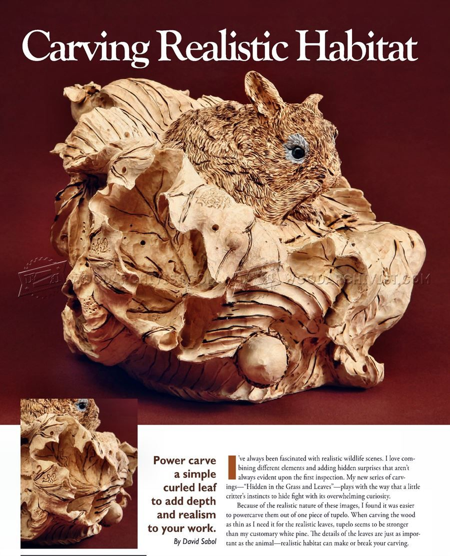 Carving Realistiс Habitat - Wood Carving