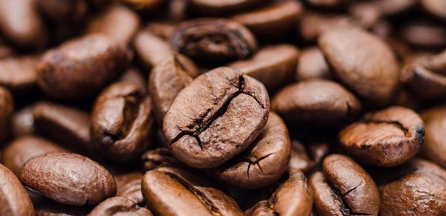 Pesquisadores criam protetor solar à base de café