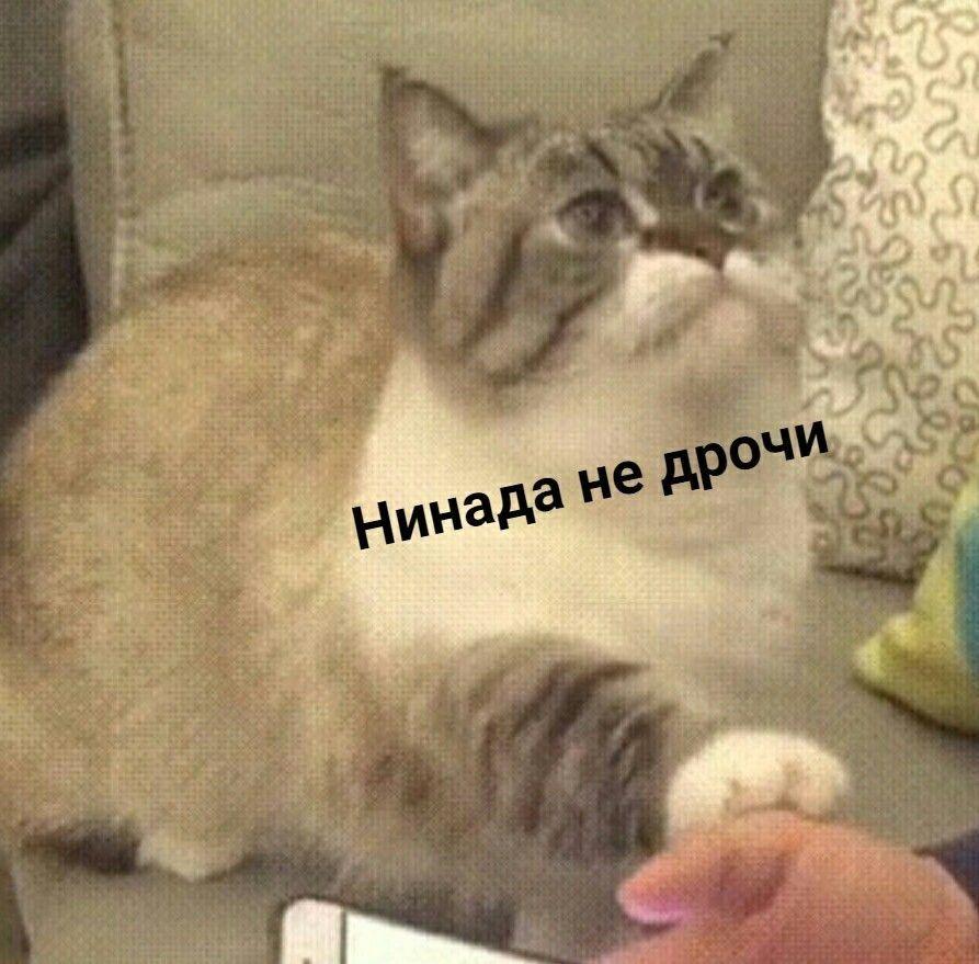 Дрочи Не Хочу Фото