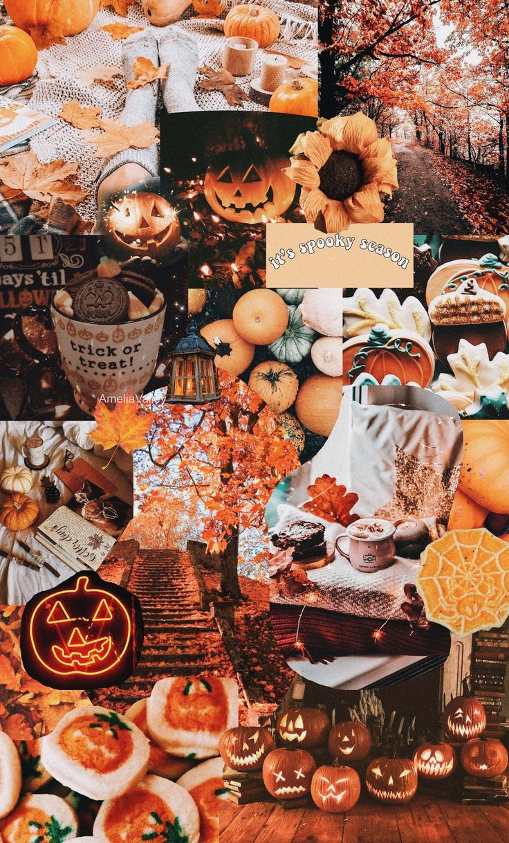 'Fall collage' Transparent Sticker by AmeliaValley