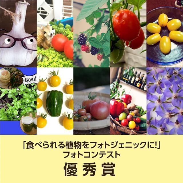 入賞作品紹介2 食べられる植物をフォトジェニックにの入賞作品が決定しました  今回も沢山のご応募本当に有難うございます 入賞作品は以下よりご確認頂けます  http://ift.tt/1KBleLk