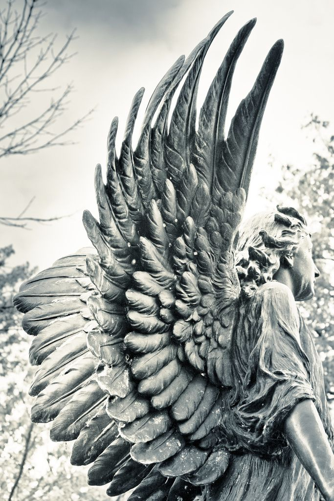 angel wings angels pinterest explore angel and angel statues