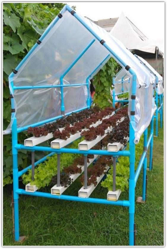 Grow Plants Without Soil Through Hydroponics Excellent Tips For Growing An Organic Garden  -- Learn more information by clicking the link on the image.