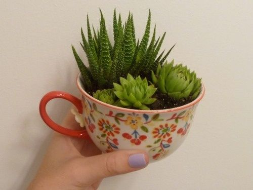 instead of pots, use teacups you find at thrift store...love this!