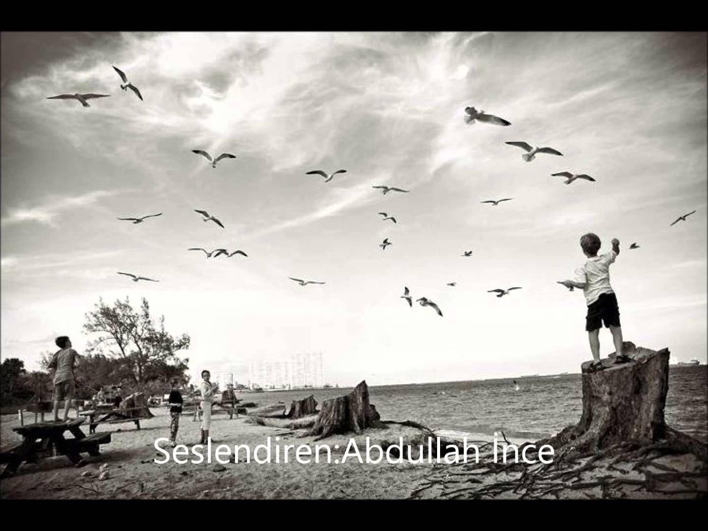 Küçük İskender-Bir Martıyı Ağlattın Sen ( Şiir Sesi )