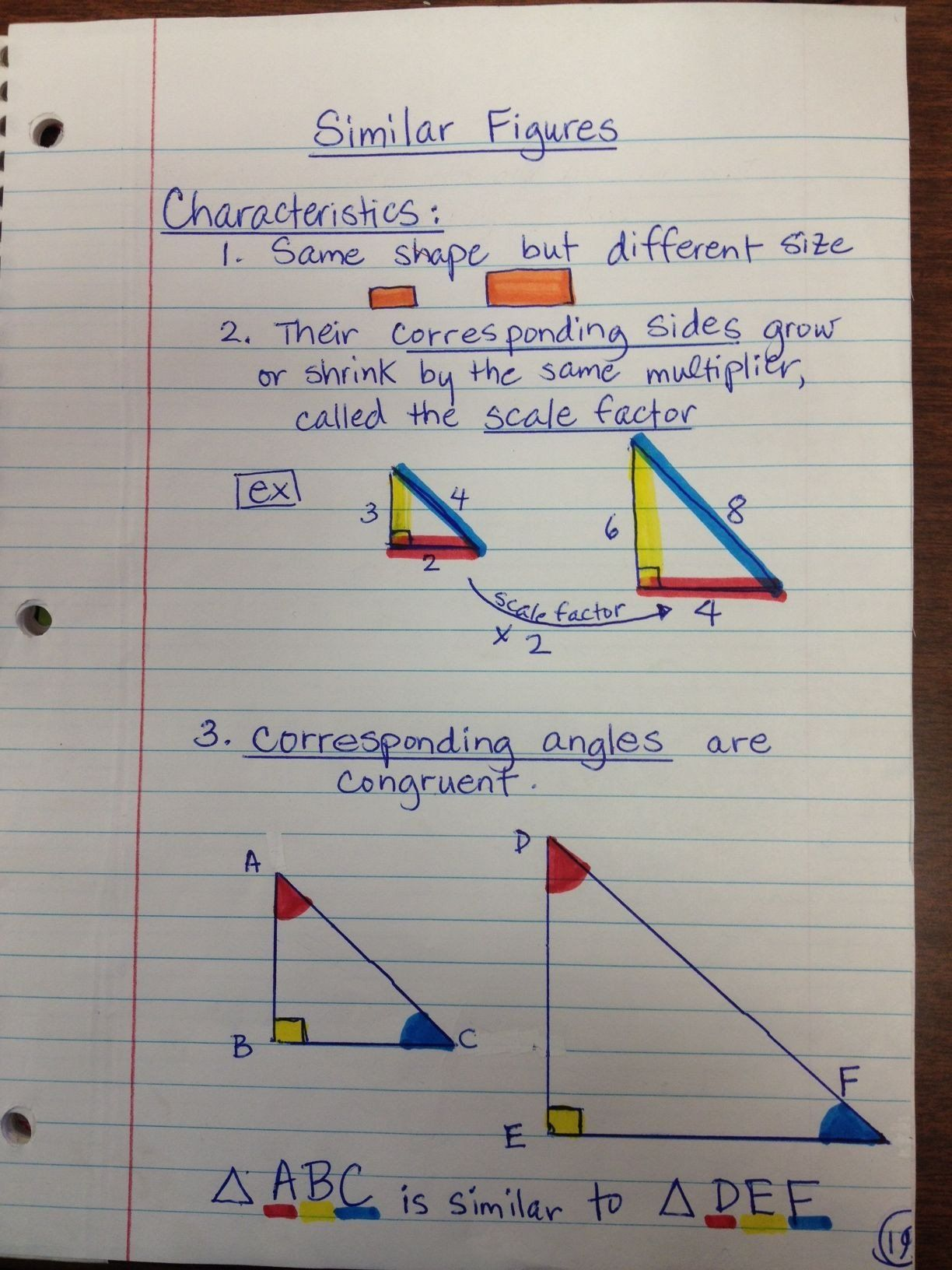 Similar Triangles Proportions Worksheet Notes On