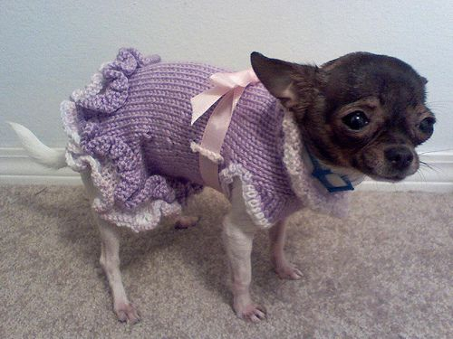 Free Pattern for the A-Line Ruffled Dog Sweater Dress | Free pattern ...