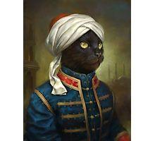 The Hermitage Court Moor Cat  Photographic Print