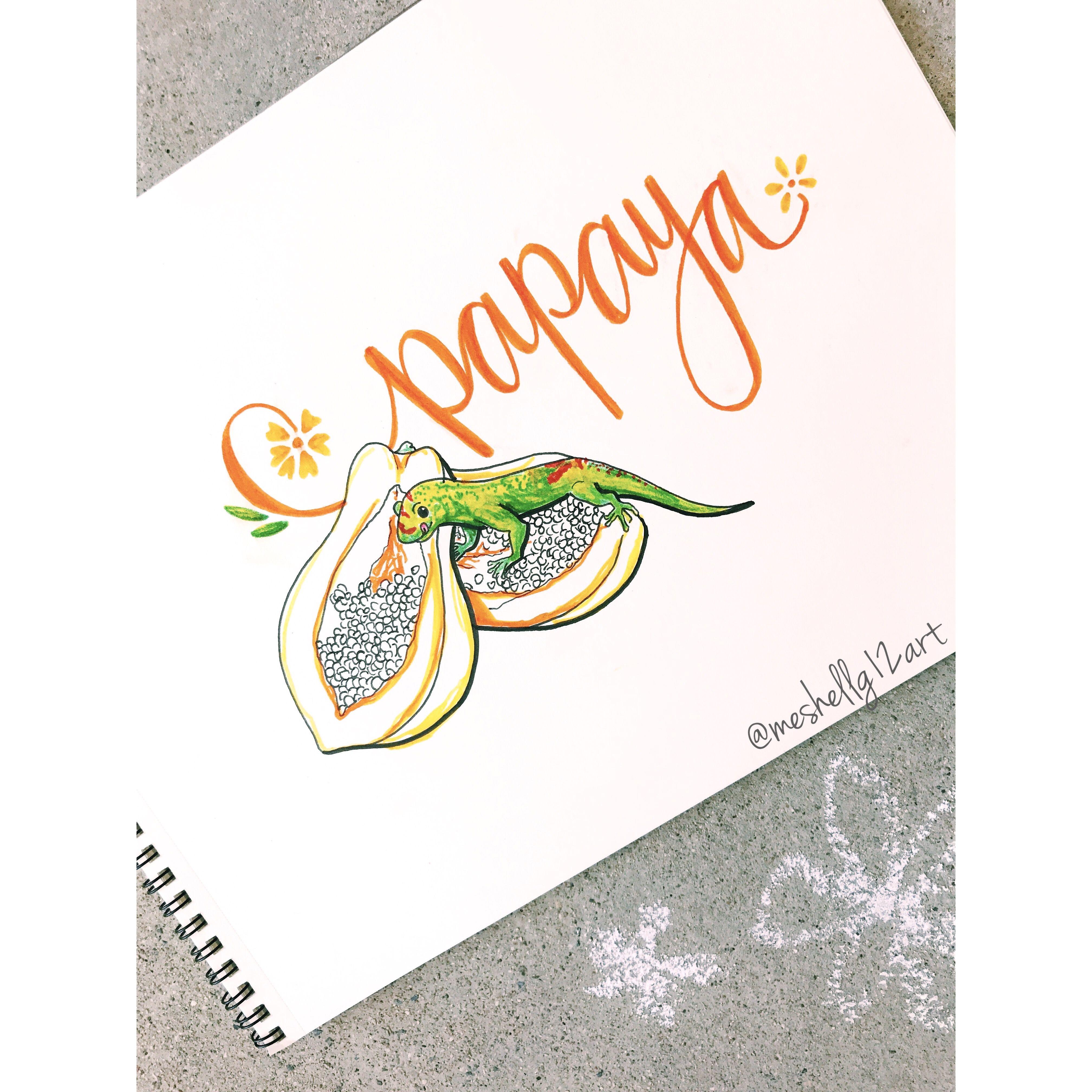 Papaya Amp Gecko Ig Meshellg12art Pinterest Meshellg12