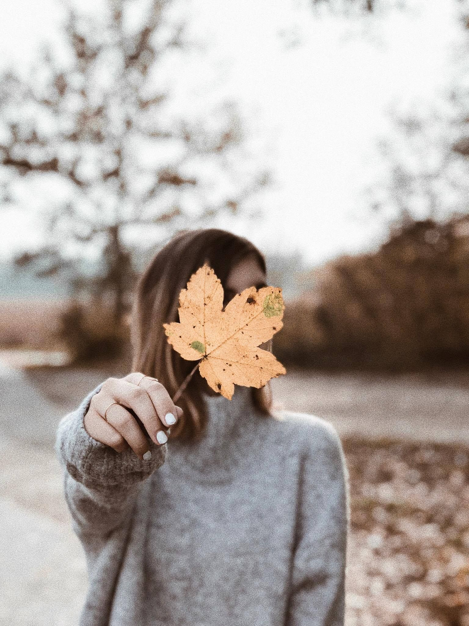 Wallpaper, Phone, Hintergrund, Hintergründe, Handy Hintergrund, Handy Wallpaper, iPhone Wallpaper, Android, herbst, fall, leave, leaves, portrait