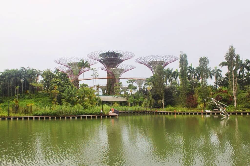 27c53645e79c9f3f8fc1d8a4819732d5 - Free Things To Do At Gardens By The Bay