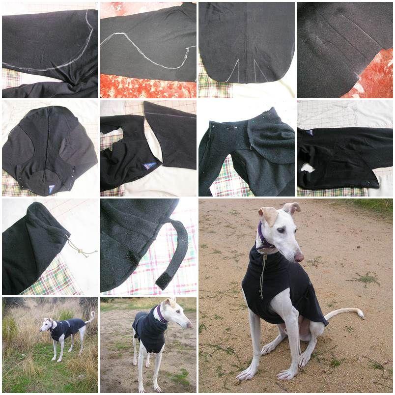 DIY Dog Coat | dogs and pets | Pinterest | Hunde, Hundebekleidung ...