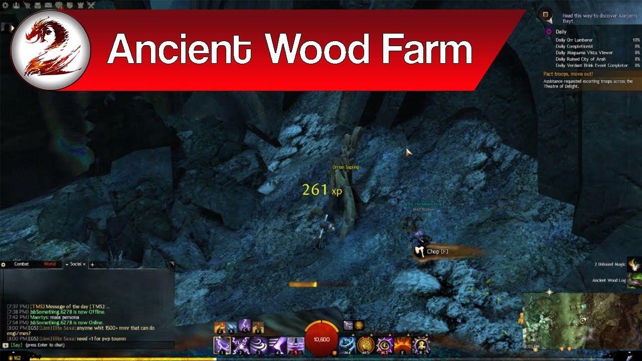 Guild Wars 2: Best Ways to Get Ancient Wood | Ancient Wood Logs