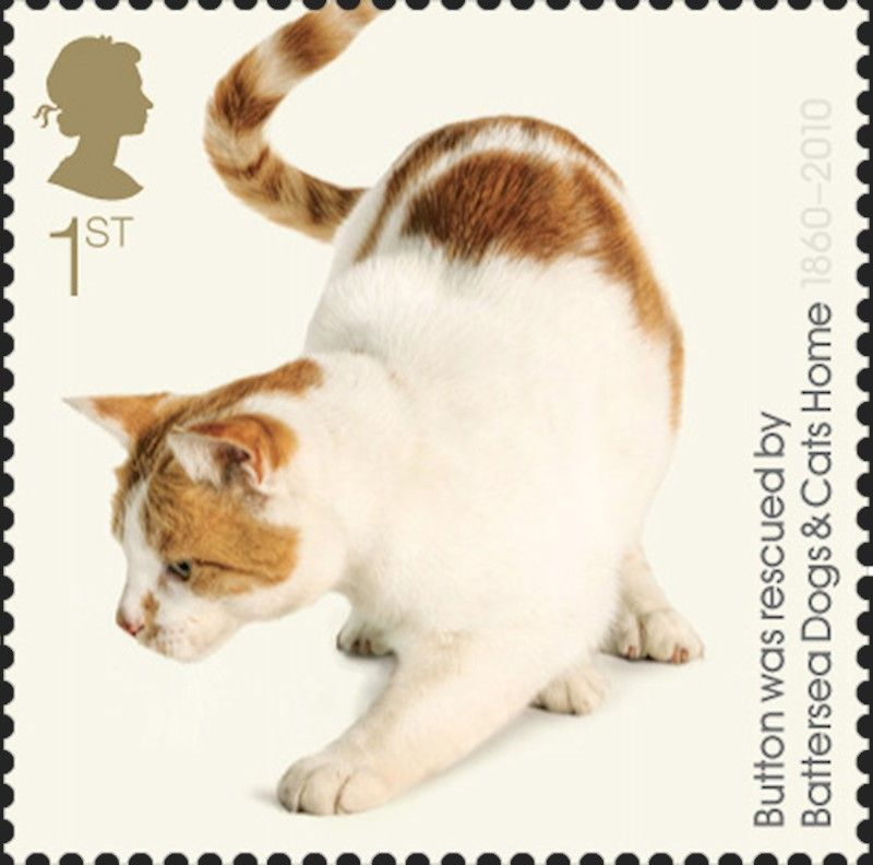 Royal Mail Special Stamps Battersea Dogs Cats Home 150th Anniversary Battersea Dogs Dogs Dog Cat