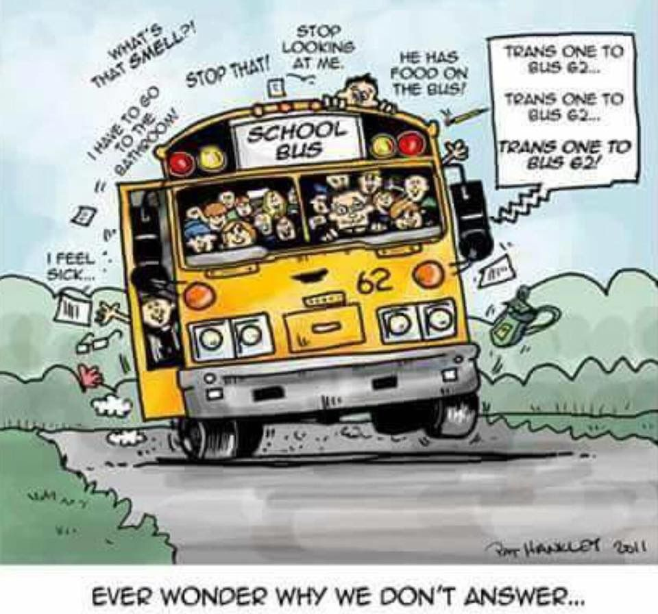 So True With Images School Bus School Bus Driving School