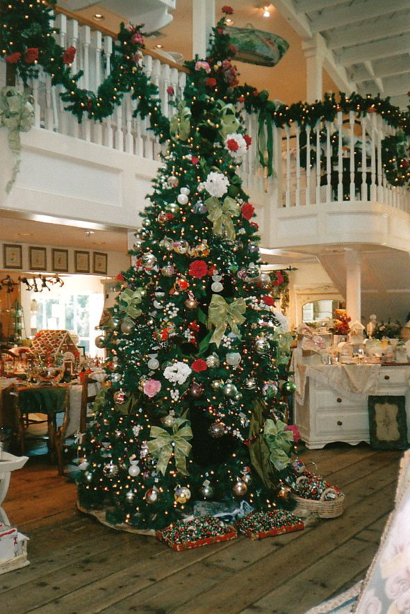 Two Story Tree I Want A Huge In