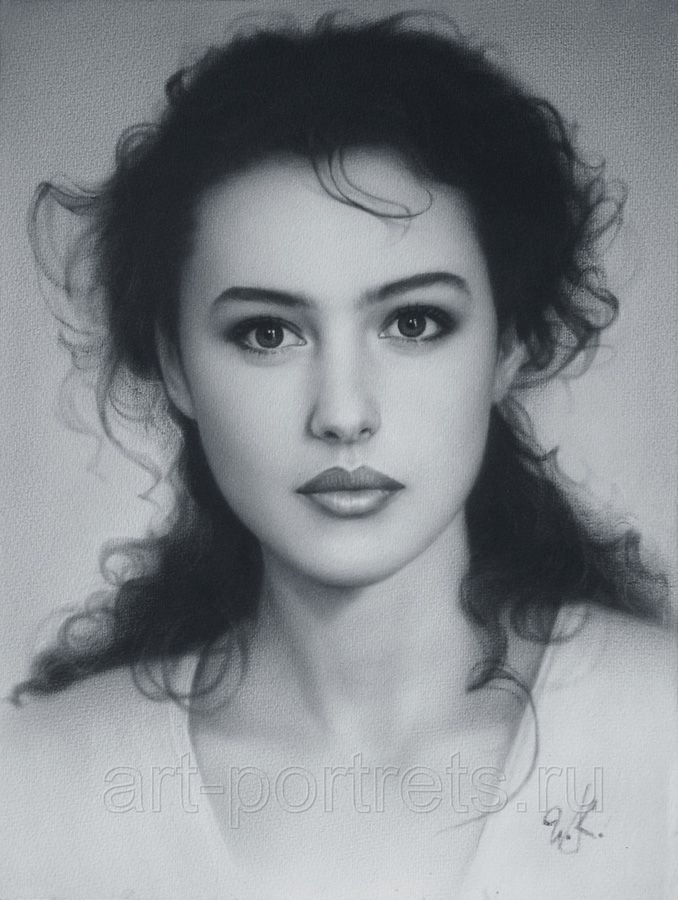 Portrait Drawing Young Monica Bellucci Has Been Drawn In Dry Brush - Guy discovered middle woods incredible
