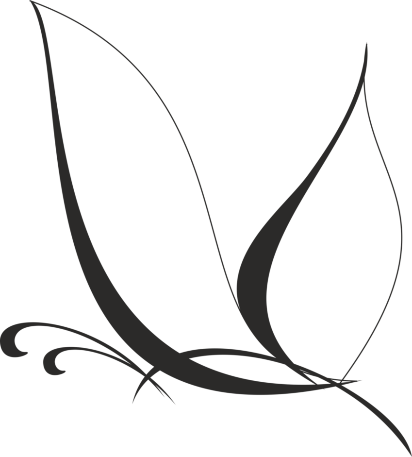 Simple Vector Line Art : Vector butterfly by jittike d rp