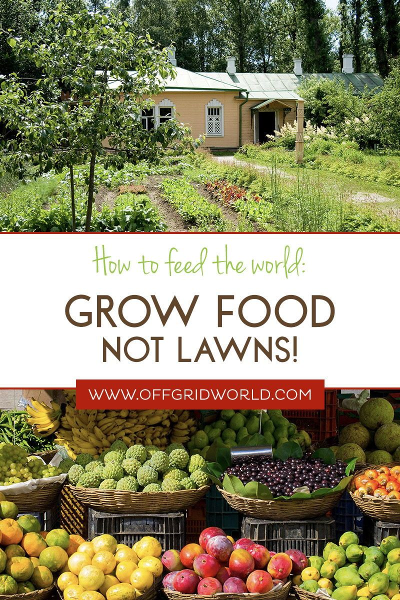 How To Feed The World: Grow Food, Not Lawns! - Off Grid World