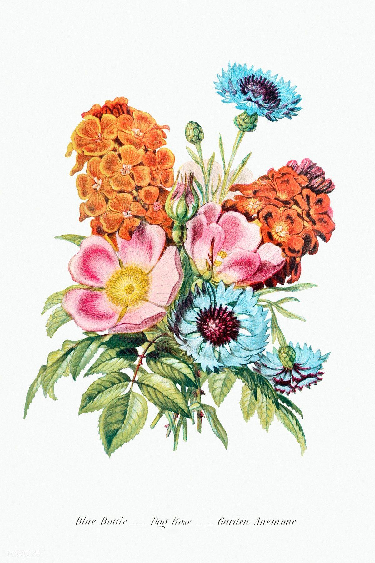 Download Premium Illustration Of Vintage Flower Bouquet Mockup 2098046 In 2020 Flower Illustration Flower Bouquet Png Summer Flower Bouquet