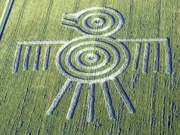 Resultado de imagen para circulos de las cosechas