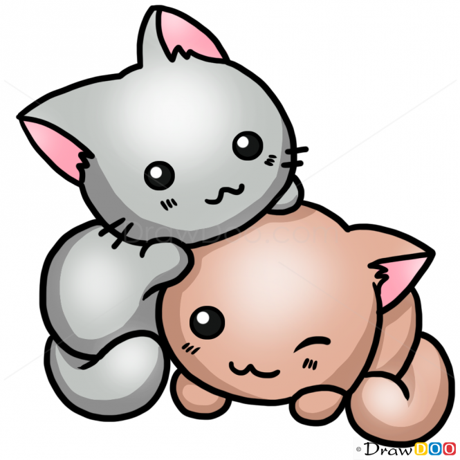 How To Draw A Cute Cat Cats And Kittens Easy Drawing Kitten Drawing Cute Cat Drawing Cartoon Cat Drawing