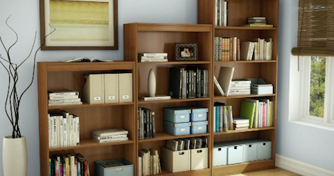 Delightful 10 Cheap Bookshelves (That Are Actually Pretty Nice)