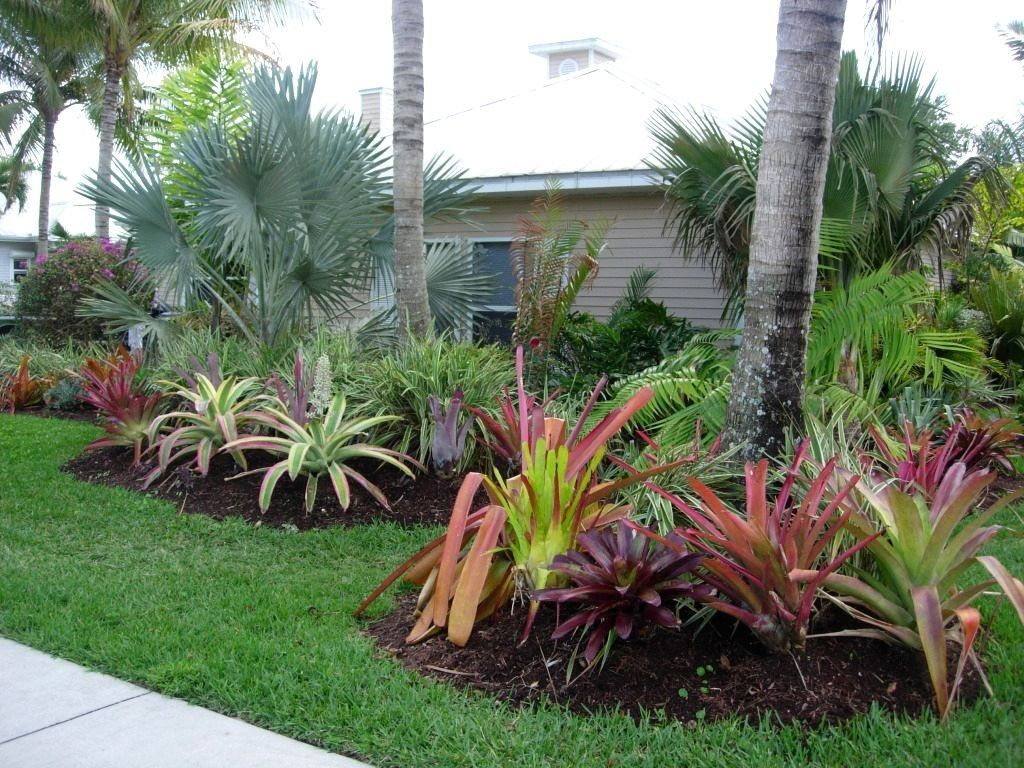Front House Low Maintenance Front Yard Landscaping Florida
