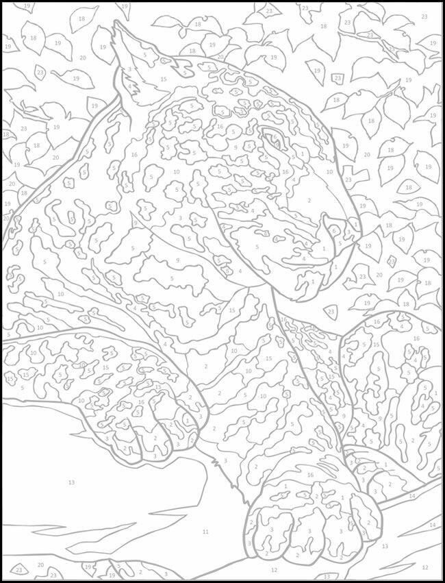 Paint by number   Animal coloring pages, Color by numbers ...