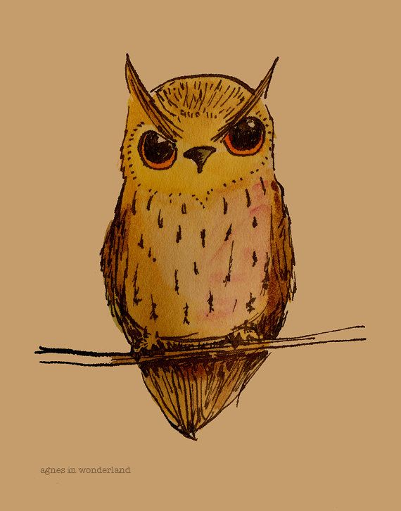 Orangeeyed Owl  watercolor ink illustration by AgnesinWonderland, $16.00