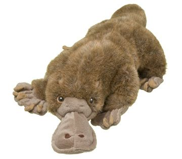 World Wildlife Fund | Duck-billed Platypus Plush – Animal Adoptions from World Wildlife Fund - WWF Gift Center