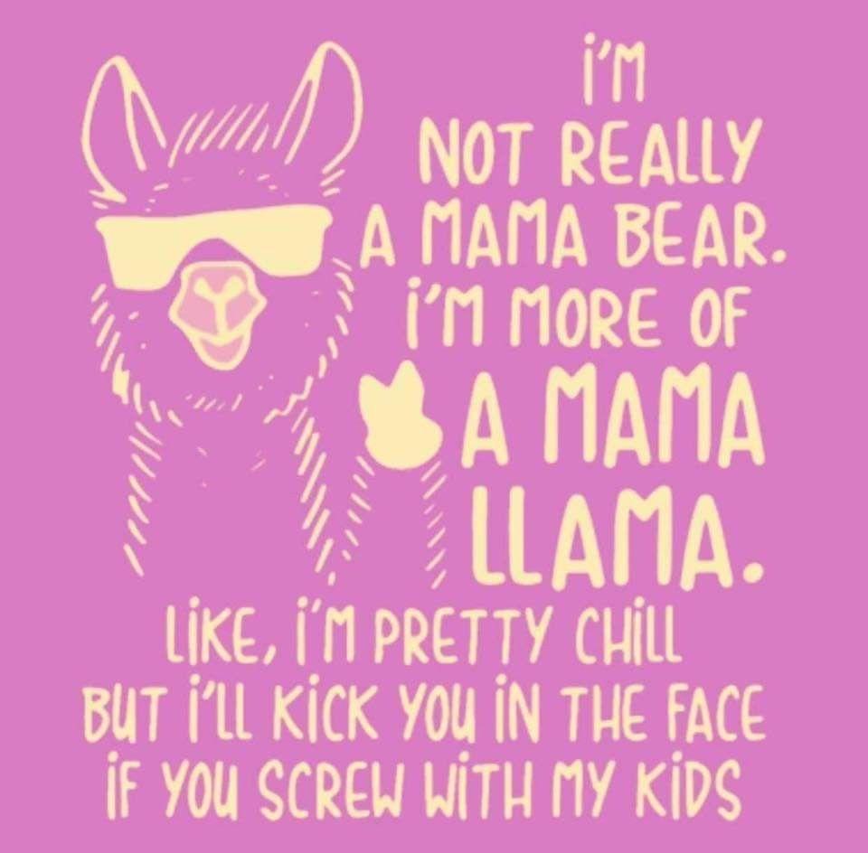 Llama Meme Funny Animal Pictures Animal Memes Funny Llama
