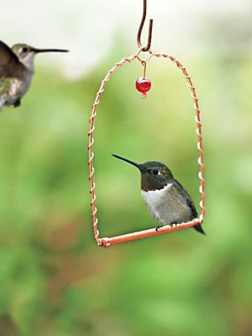 e54e1907fac0f Hummingbird Swing - Perch for birds - Garden decor