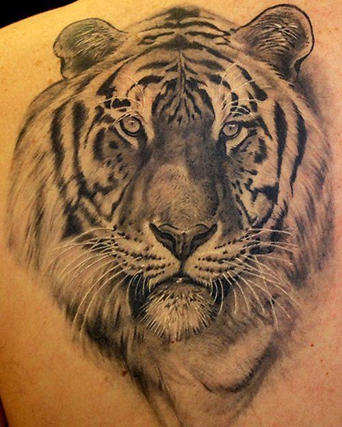 f2dbab436a9ad 2017 trend Tattoo Trends - 9 Best Tiger Tattoo Designs : Face of the # TigerTattoo.