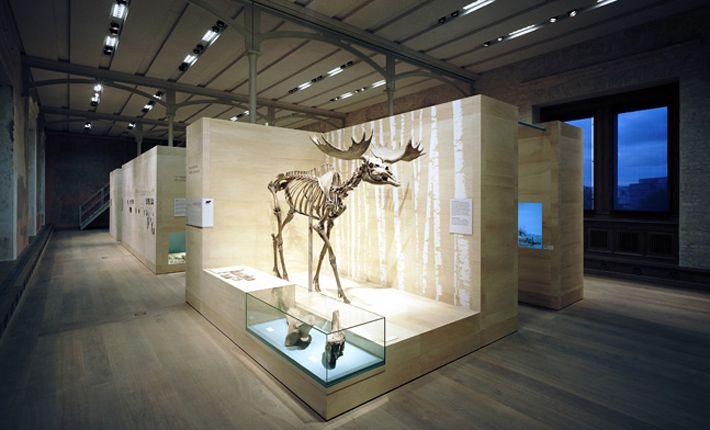 Neues Museum Museumsinsel Berlin Schiel Projektgesellschaft Ausstellungsdesign Museum Ausstellungsdesign Ausstellung