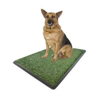 As Seen On Tv X Large Potty Pad X Large Potty Pad Green