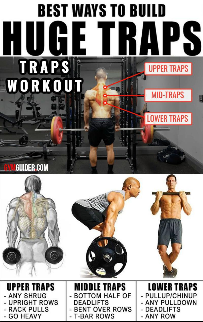Traps Workout & Training Plan To Build Towering Traps  #trapsworkout