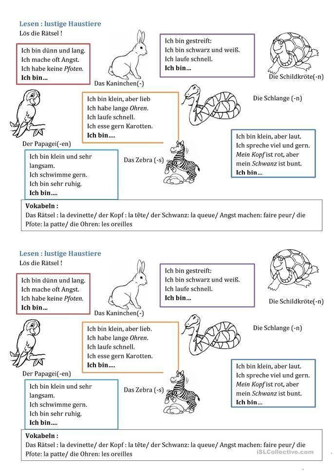 Arbeitsblatt rund um Haustiere
