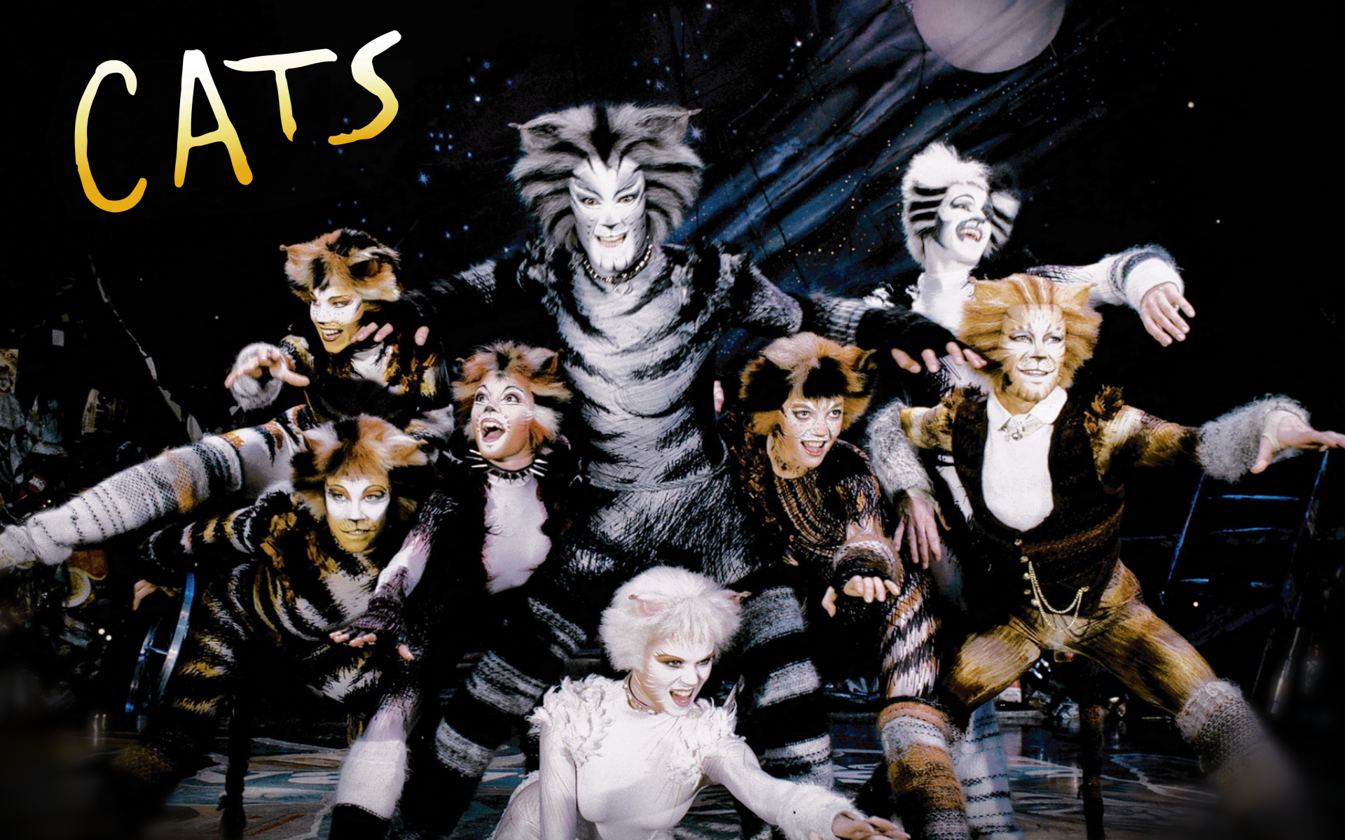 I know all the Words Cats musical, Cat movie, Musical