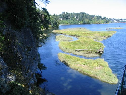 View at the Living Forest Campground in Nanaimo
