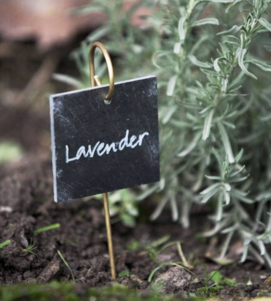 Slate Label on Brass Rod Garden labels, Slate garden