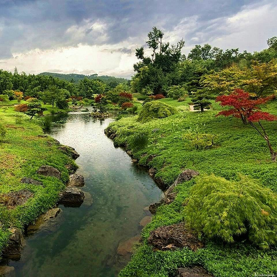 Pin de Sora'e Ku em Nature Jardim