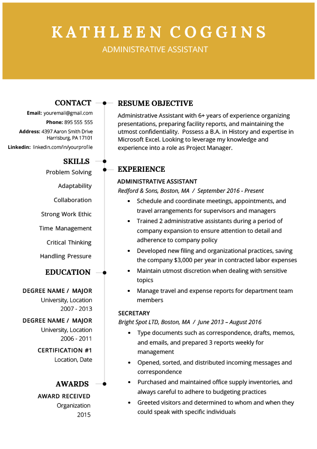 2019 Gold Resume Rg Resume Summary Examples Server Resume Functional Resume Template