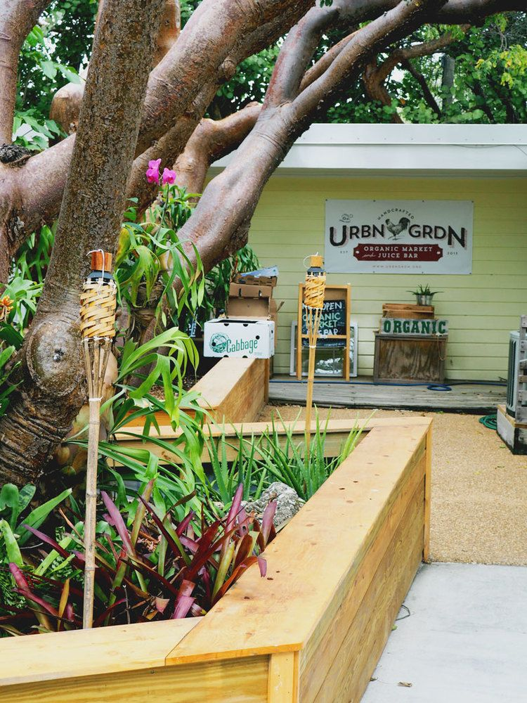The Best (and Worst) of Our Florida Keys Adventure ...